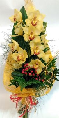 Clássicas Orquídeas Amarelas